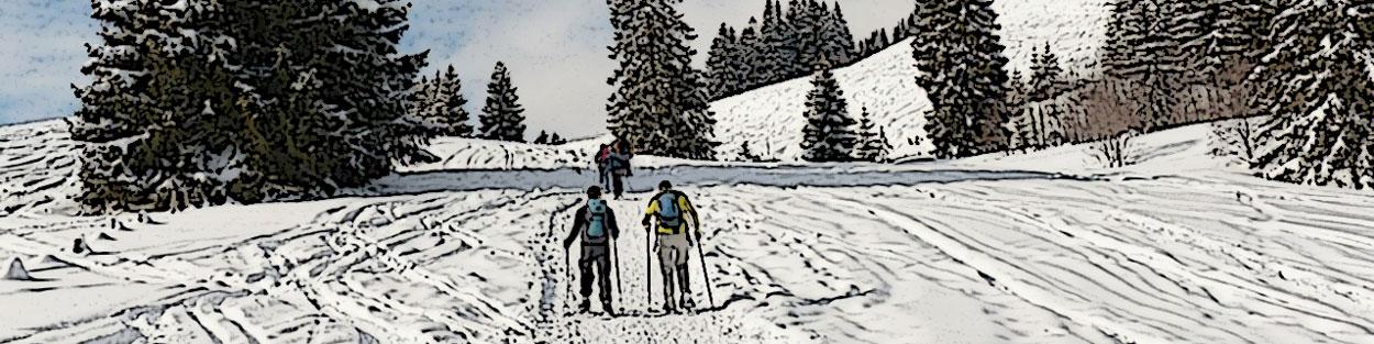 Schneeschuhweandern im Murnauer Moos
